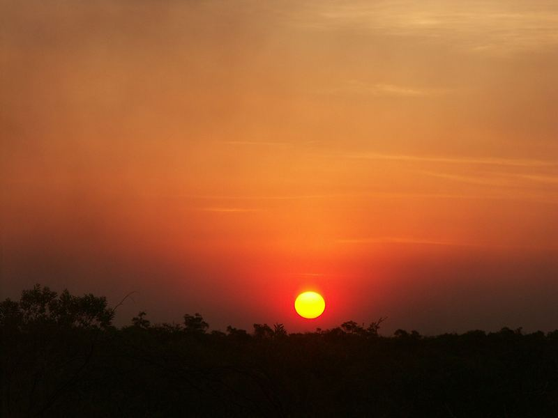 Sunset im Buschland