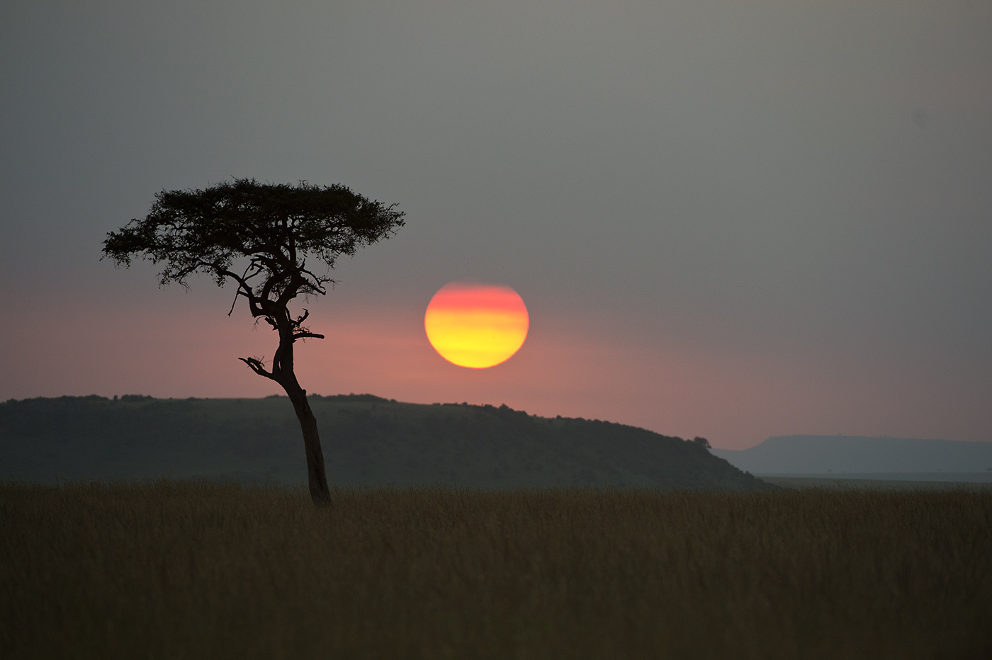 Sunset in der Masai Mara