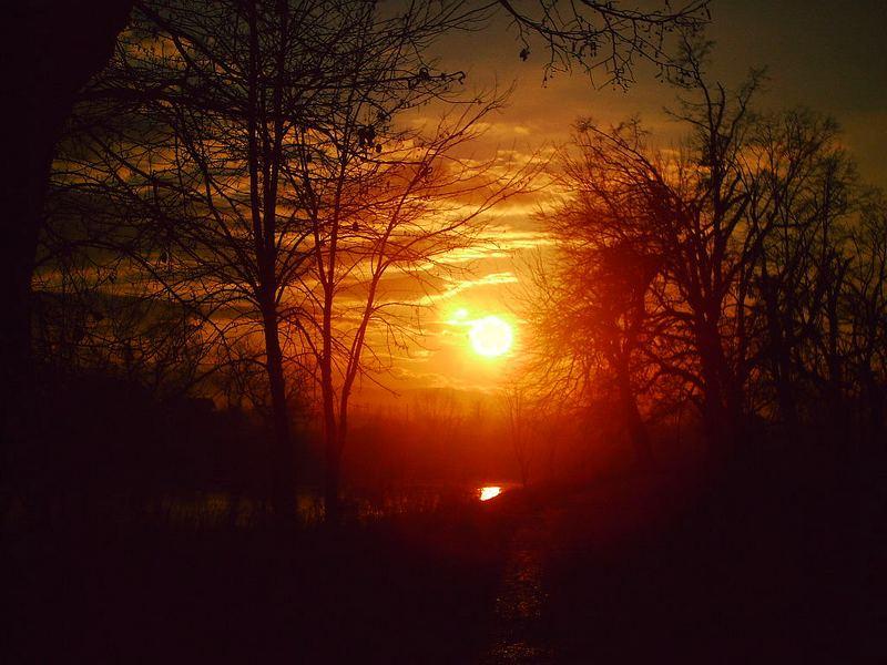sunset in homeland