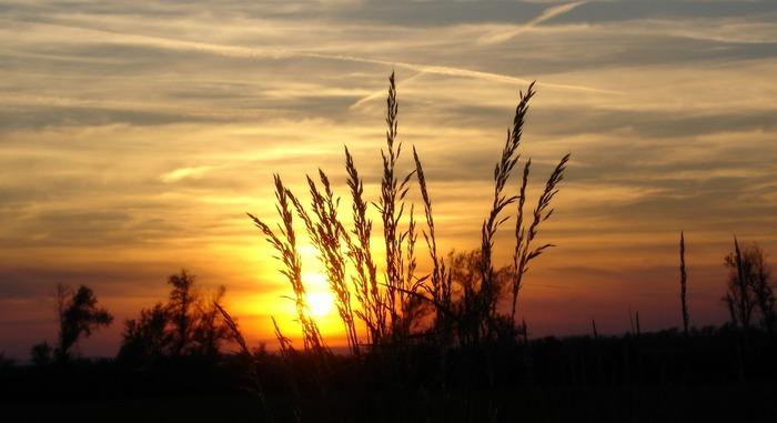Sunset in Pannonia