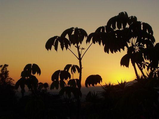 Sunset in SB