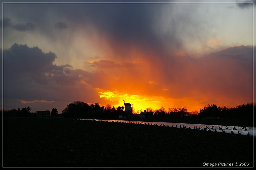 Sunset in Scheidingen