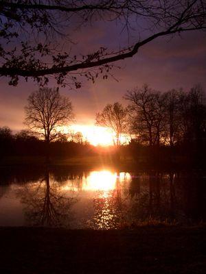 sunset in schönbusch
