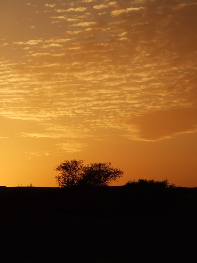 Sunset in the Negev, IL
