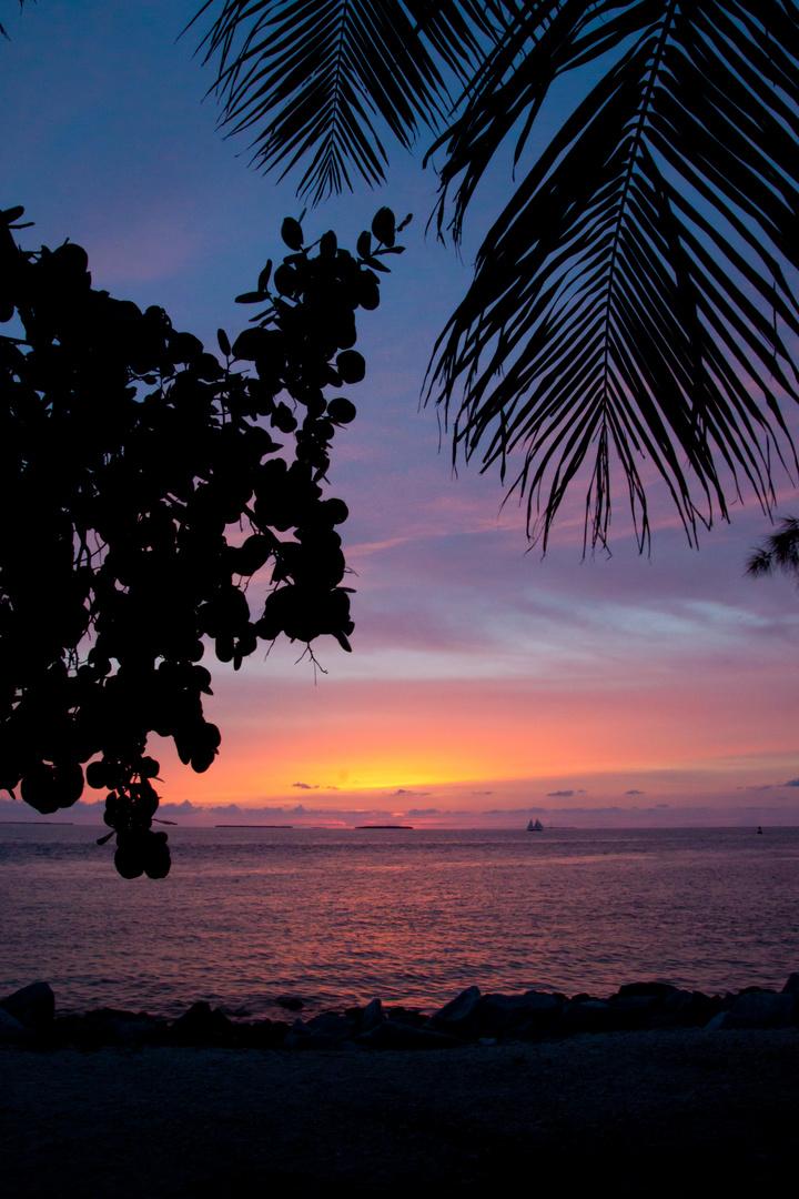 Sunset - Key West