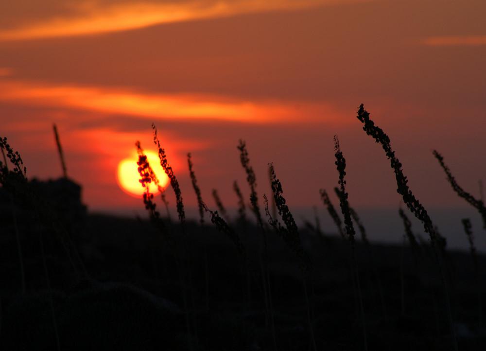 Sunset Malta - die zweite