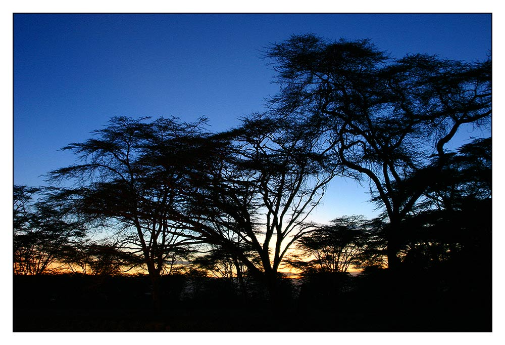 Sunset Naivasha