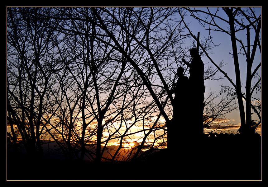 Sunset net