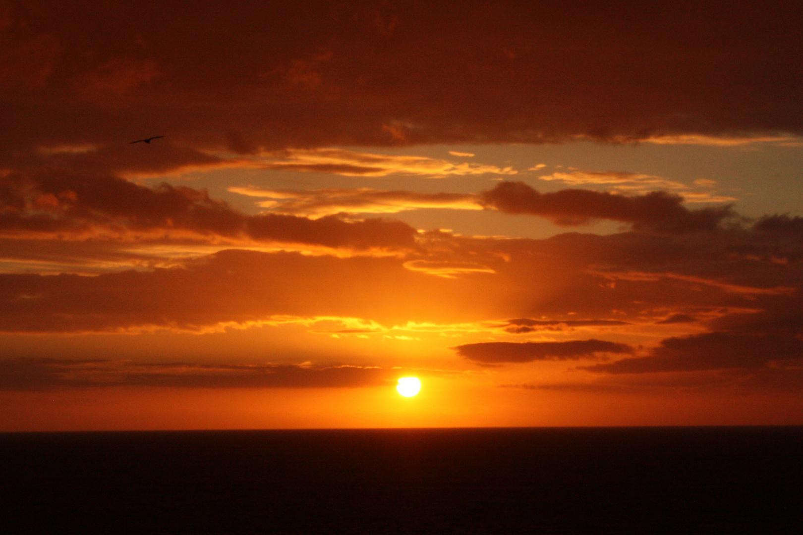 Sunset Newquay