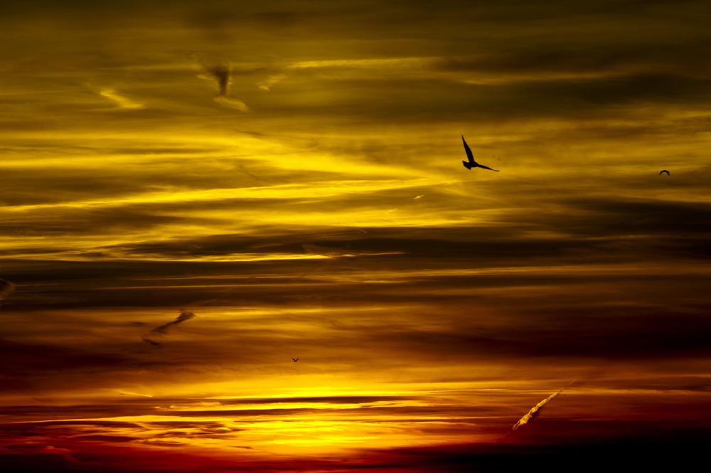 Sunset North Sea
