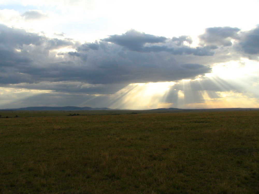 Sunset on African plains