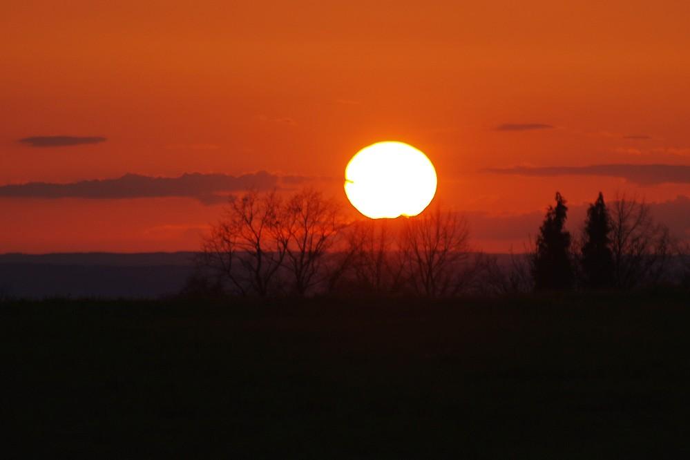 Sunset over Beerheide
