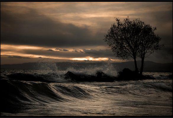 .. sunset Passion ..