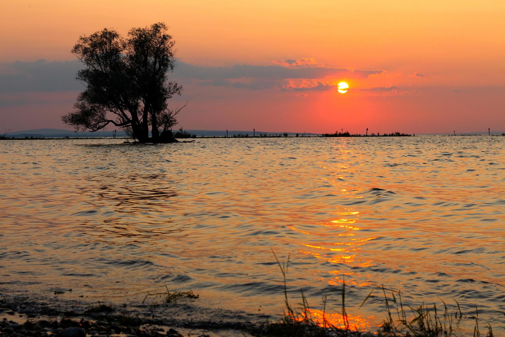 Sunset Rheinholz