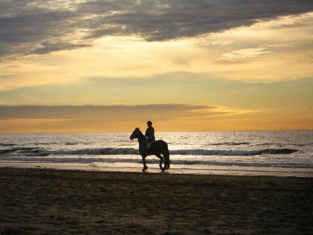 sunset-rider