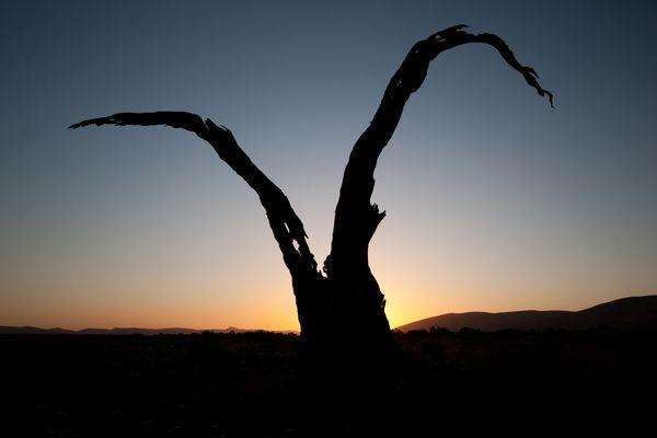 sunset @ soussusvlei 2