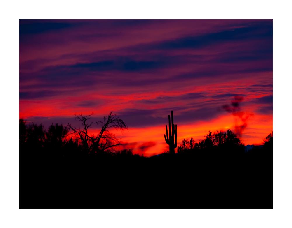 Sunset südlich von Ajo