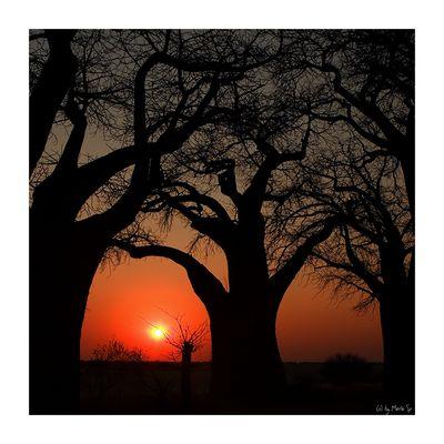 sunset@baines