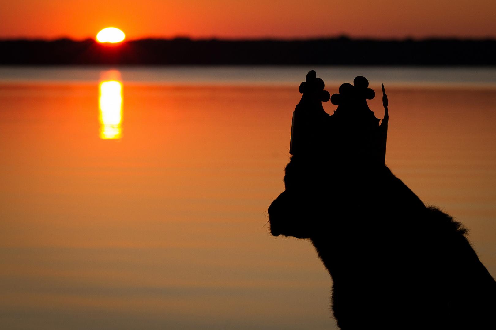 * ...sunsetking *