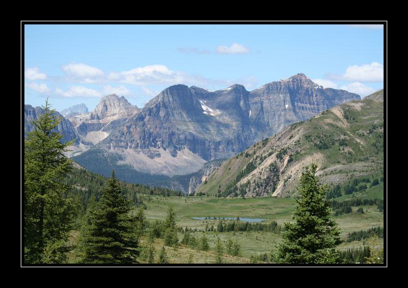 Sunshine Meadows, Banff National Park