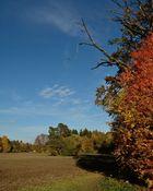super toller Herbsttag mit schönen Farben....