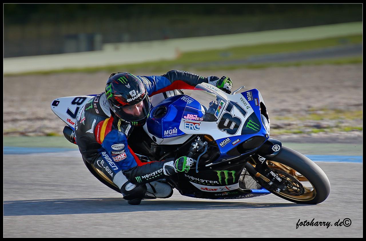 Superbike / Superstock 1000 # 87