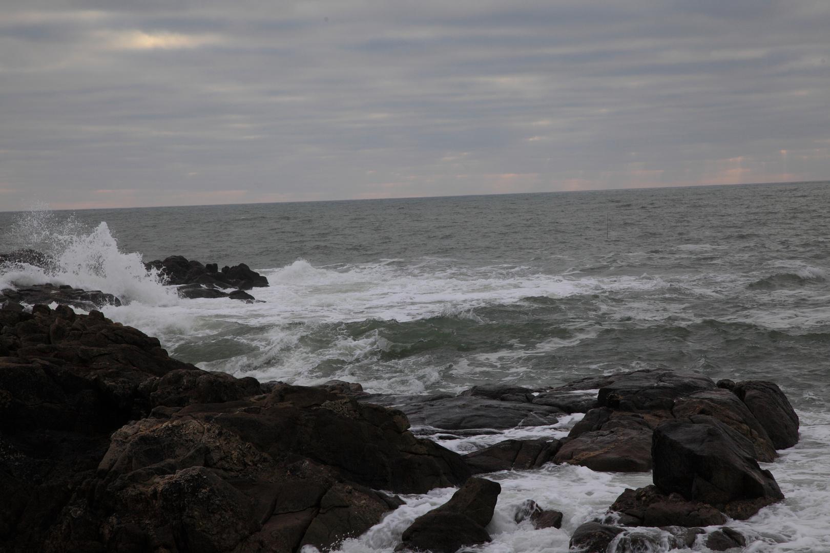 Sur la côte sauvage