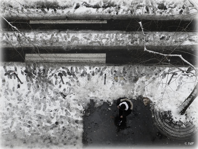 Sur la neige, les traces de pas sont éphémères...