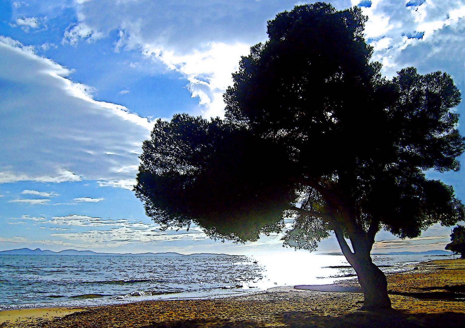 sur la plage, j'y suis bien à son ombre