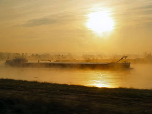 sur le Rhin au petit matin