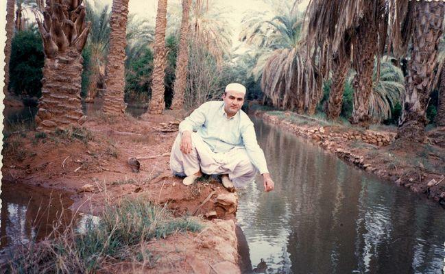 sur les palmier de ghardaia