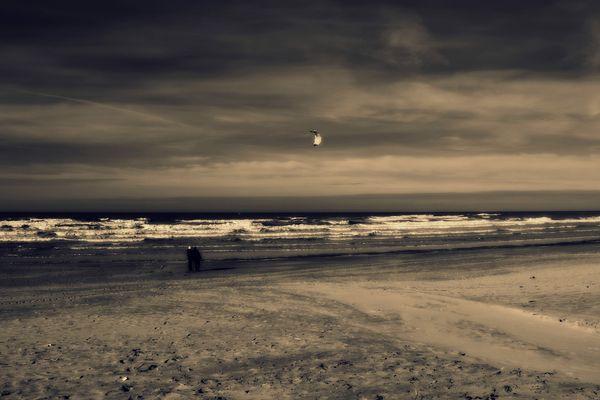 Sur toutes les plages