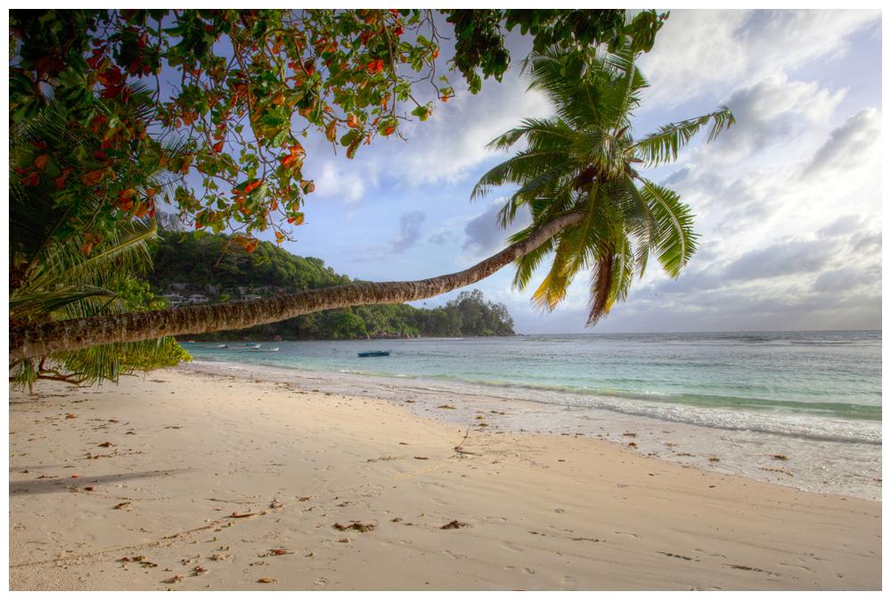 Sur une plage abandonnée ...