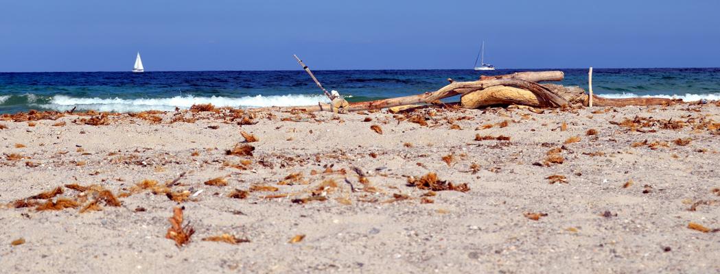 sur une plage abandonnée . . .