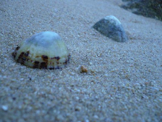 sur une plage bretonne
