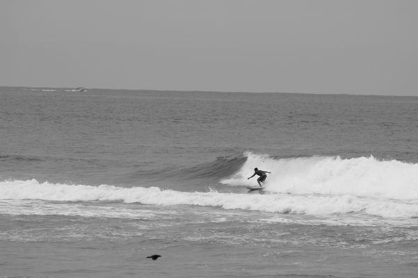 Surf à Acapulco