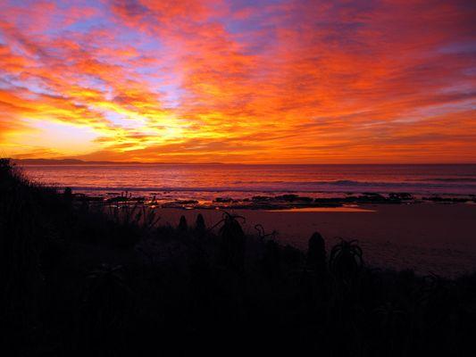 Surfer's Sunrise