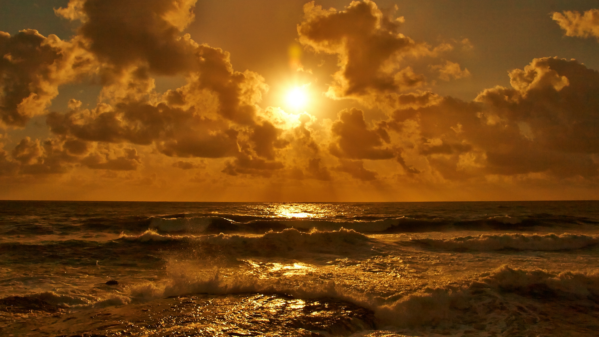 surfin' sunset