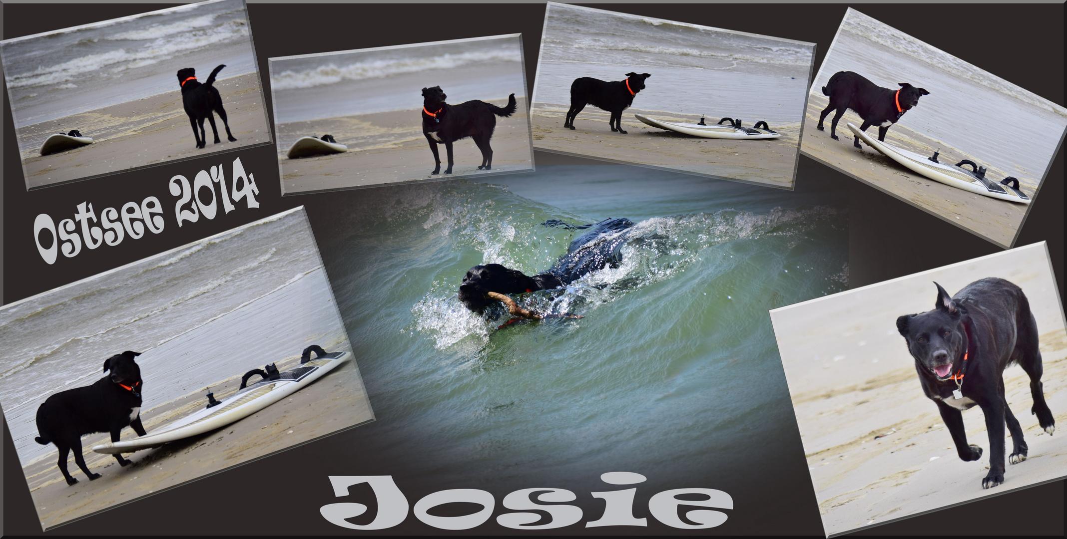 Surfing in der Ostsee .....