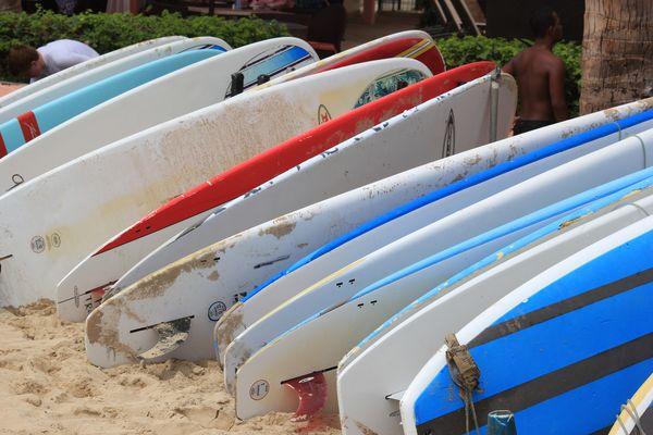 Surfs au repos