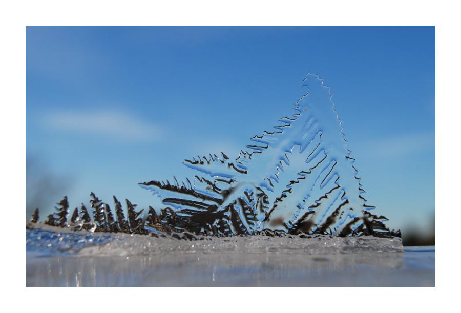 Surreale Winterwelten 2