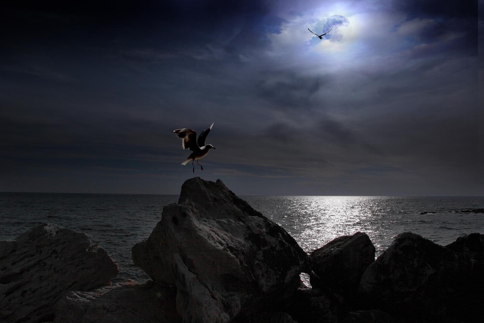 Surrealismo - Francesco Margarita - volo nella notte -