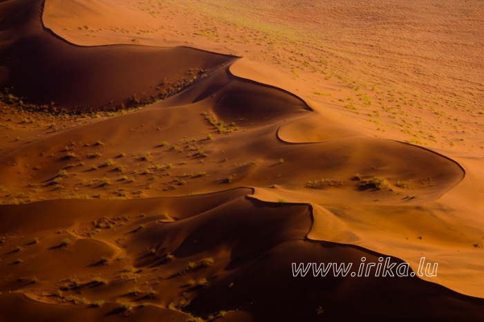 Survol des dunes de Namibie