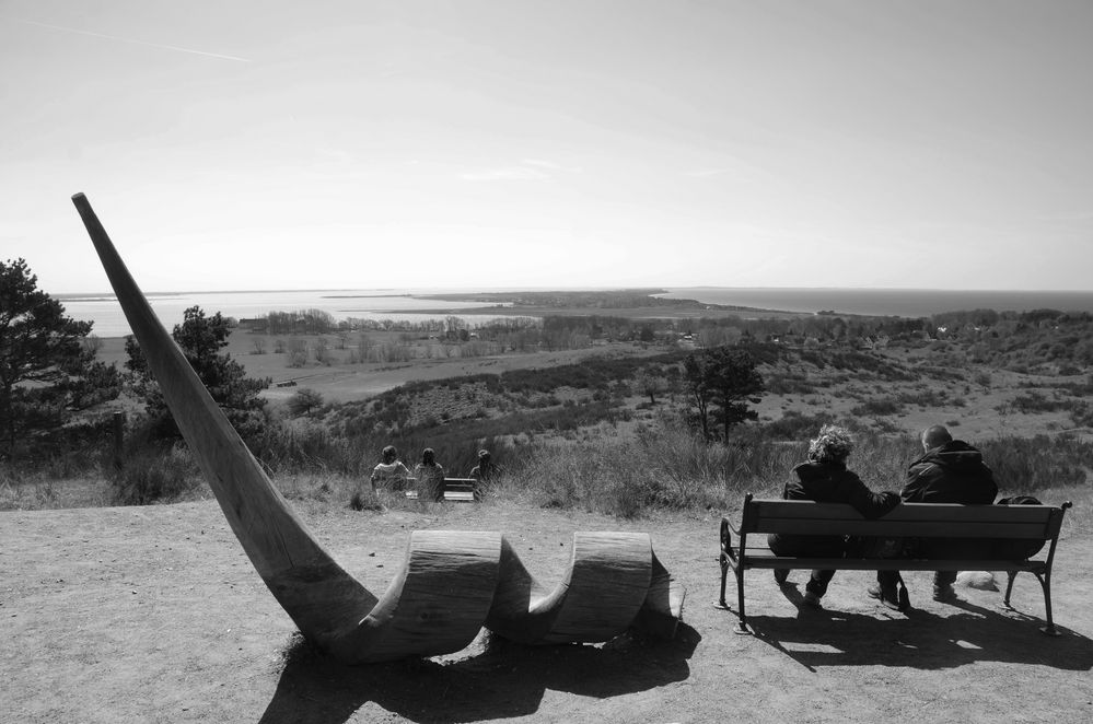 S/W Inselblick Hiddensee