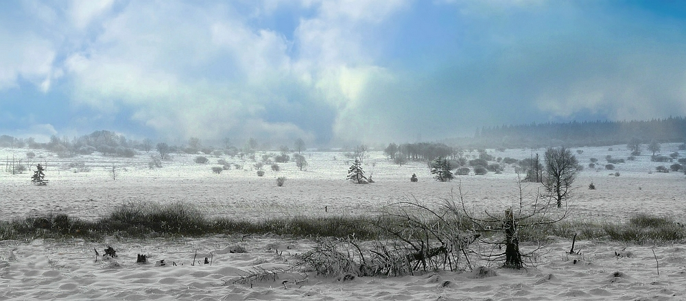 Swamp of ice and snow (19)