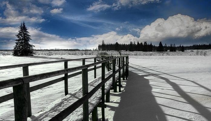Swamp of ice and snow (2)