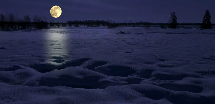 Swamp of ice and snow (4) : the night