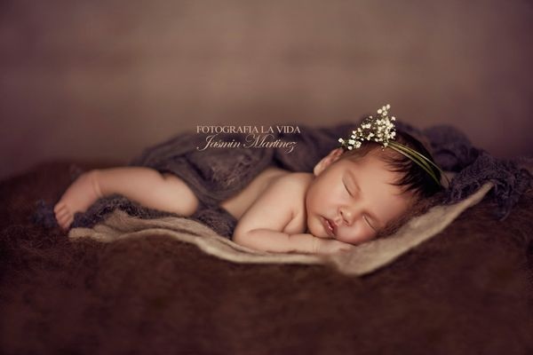 * Sweet Dreams 2*