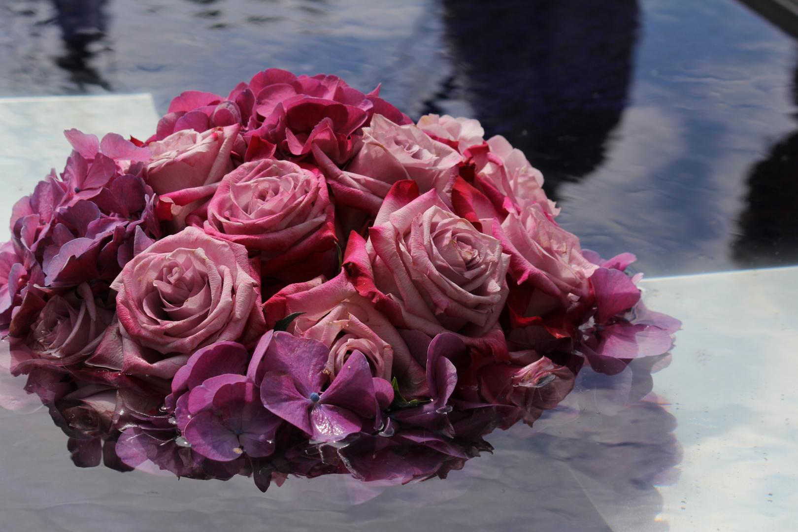 Swimming roses