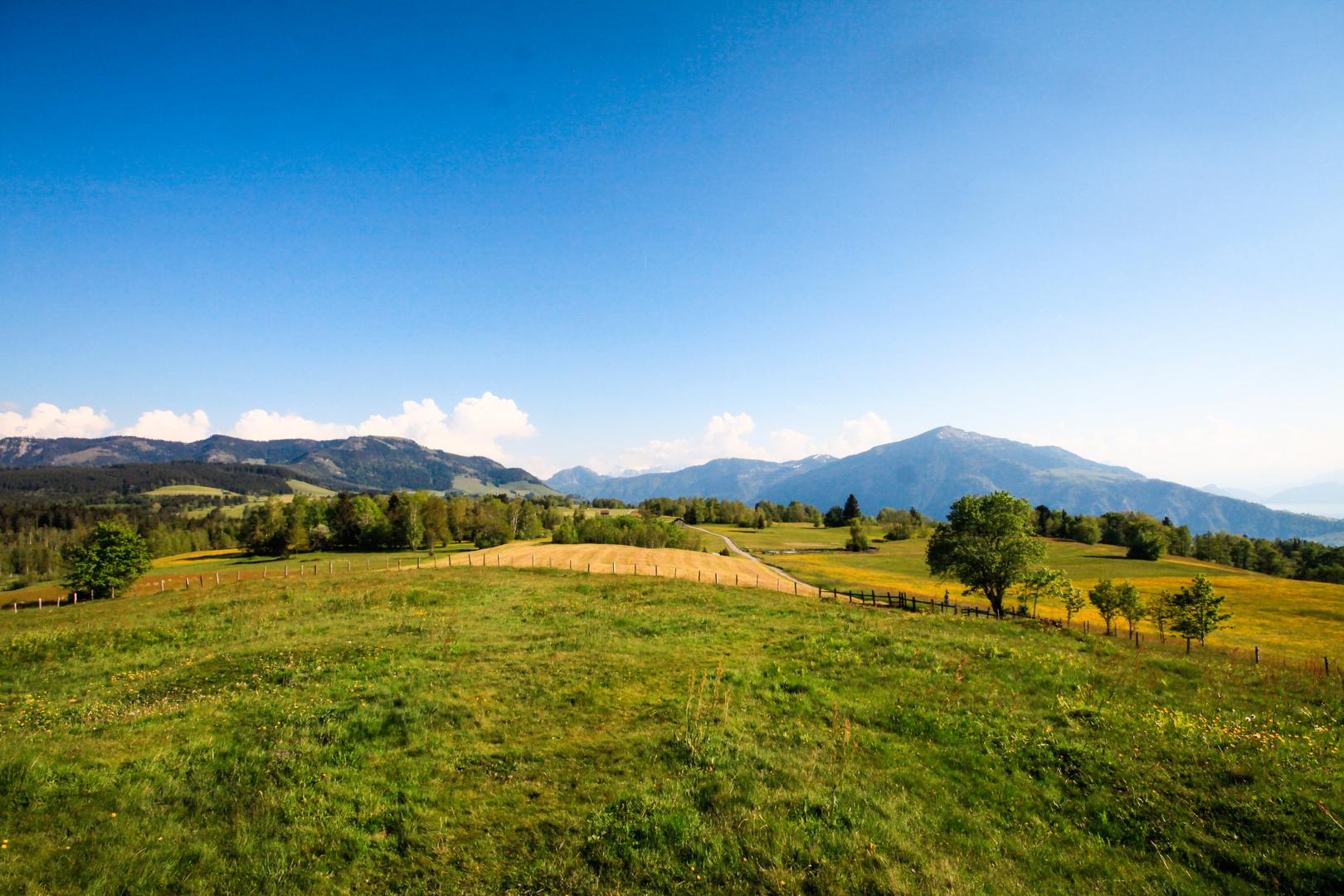 _swiss Alps_10
